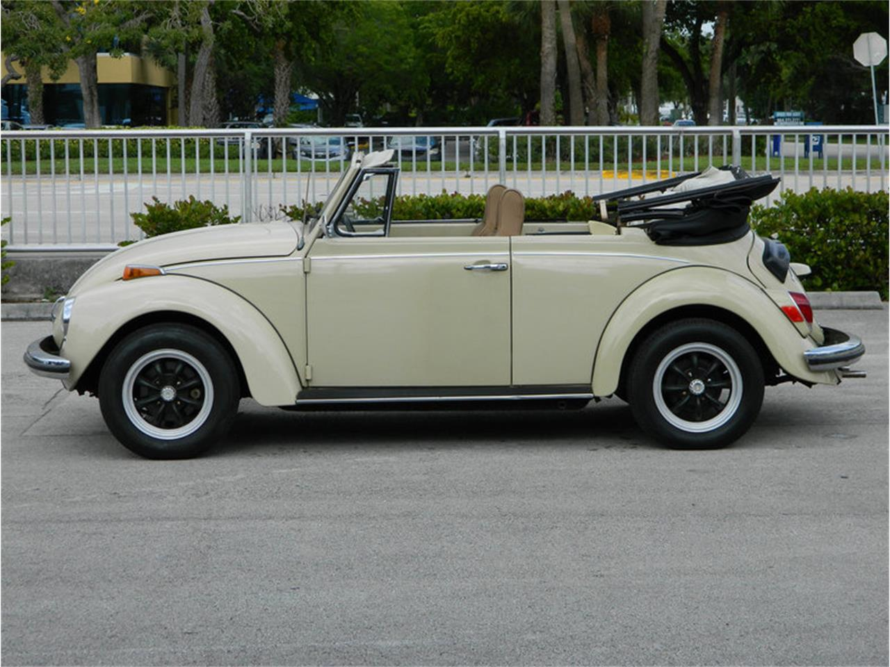 Large Picture of '71 Beetle - NMBR