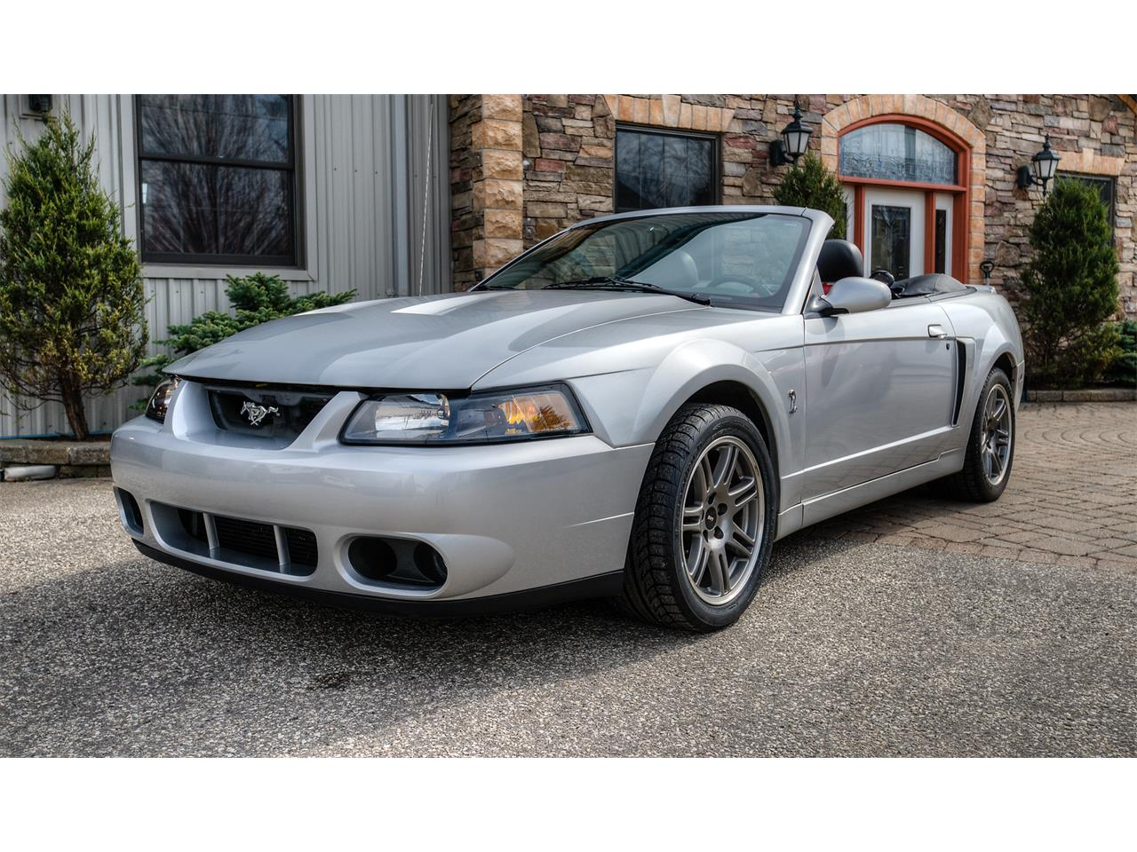 Large picture of 03 ford mustang svt cobra offered by a private seller nkxc