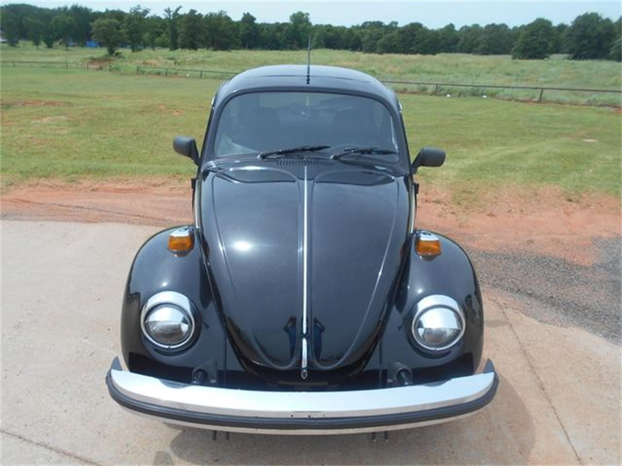 Large Picture of '77 Beetle - NN3Z