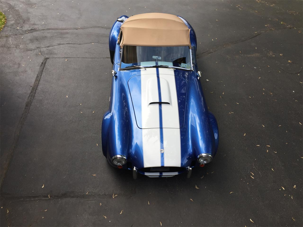 Large Picture of '66 Cobra - NNI0