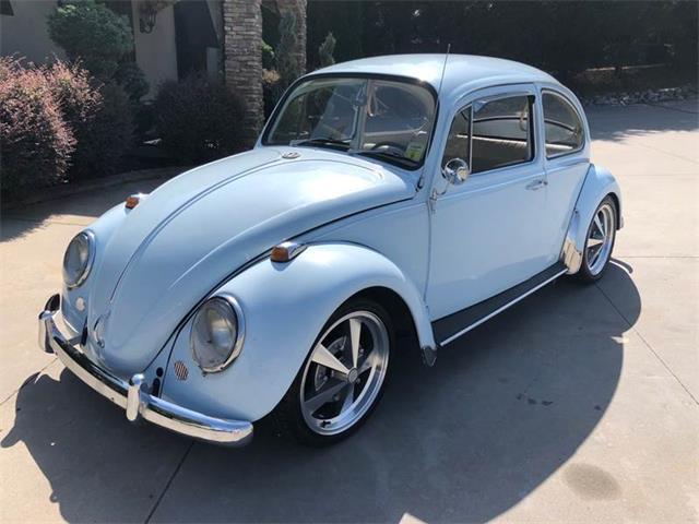 Picture of '67 Beetle - NOP9