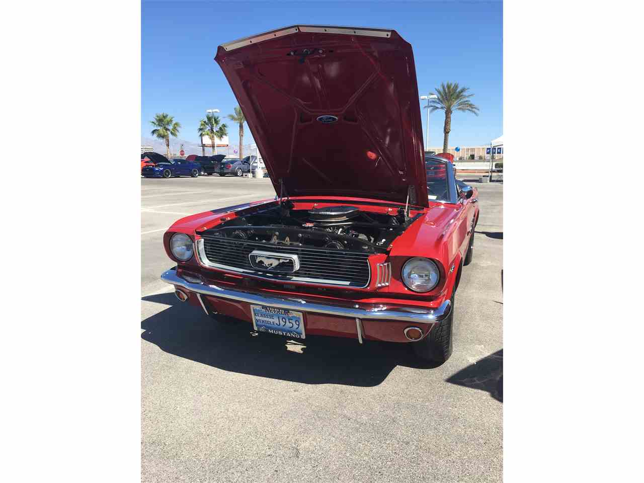 Large Picture of '66 Mustang - NPY5