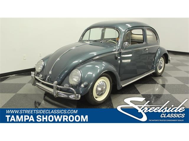 Picture of '56 Beetle - NQ92