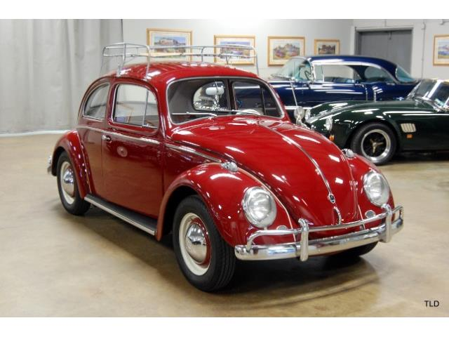Picture of '59 Beetle - NQAJ