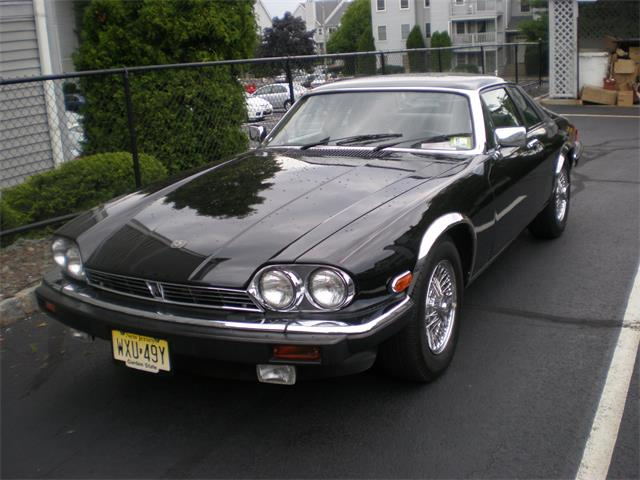 Picture of '88 XJS - NQC0