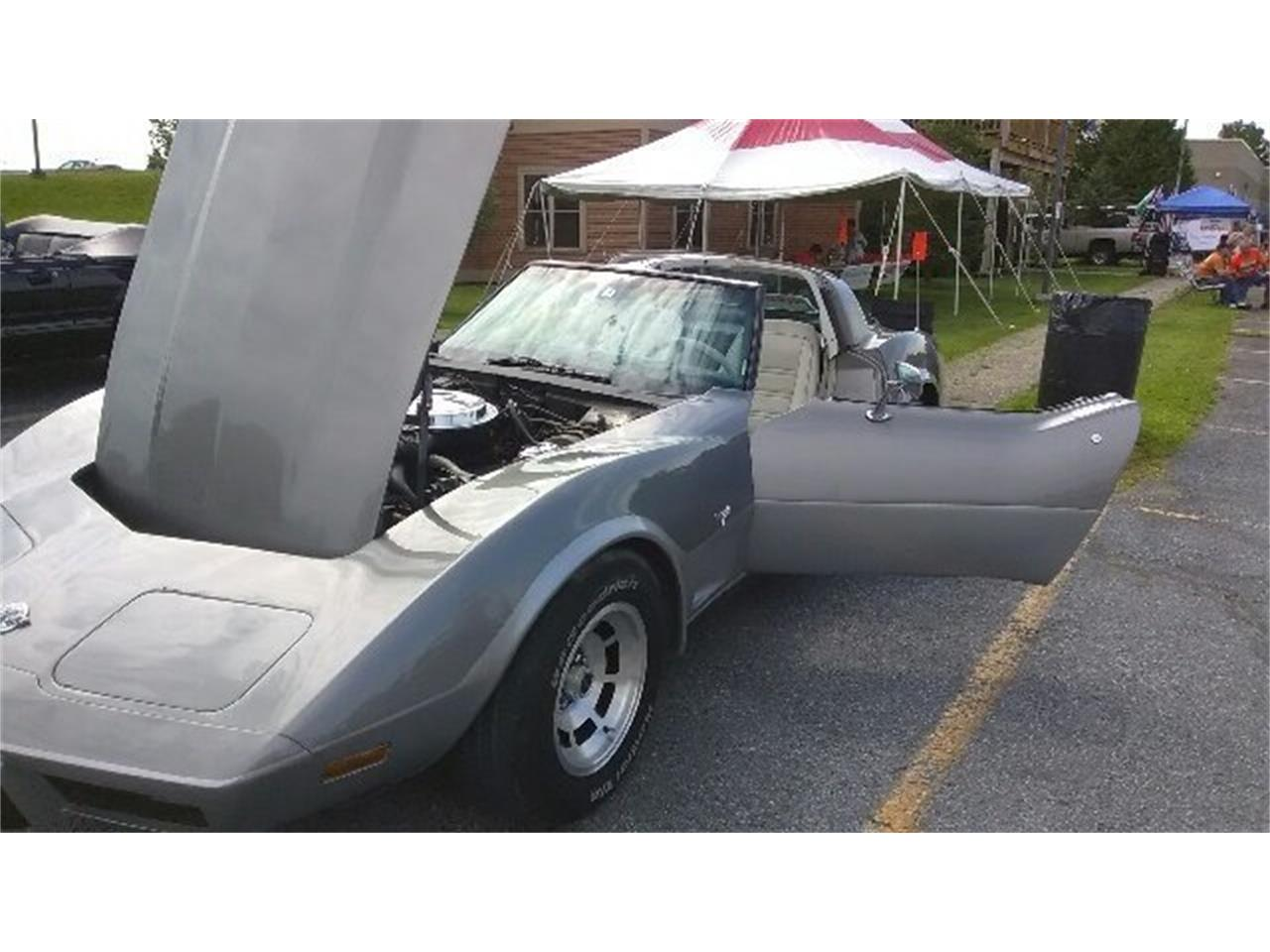 Large Picture of '78 Corvette located in New York Auction Vehicle - NR07