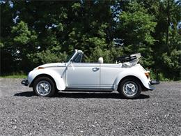 Picture of '78 Beetle - NR76