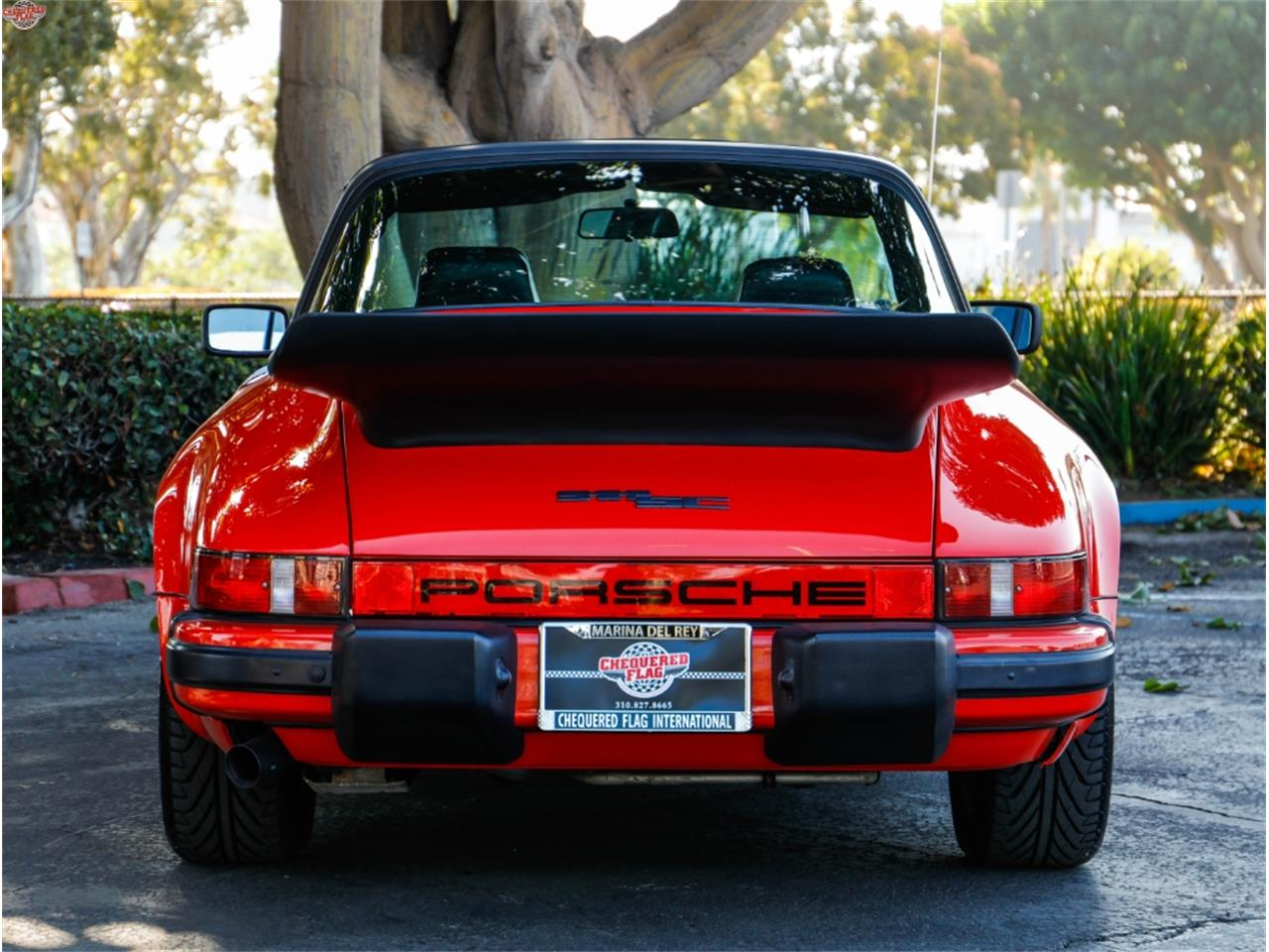Large Picture of '81 911SC - NRBO