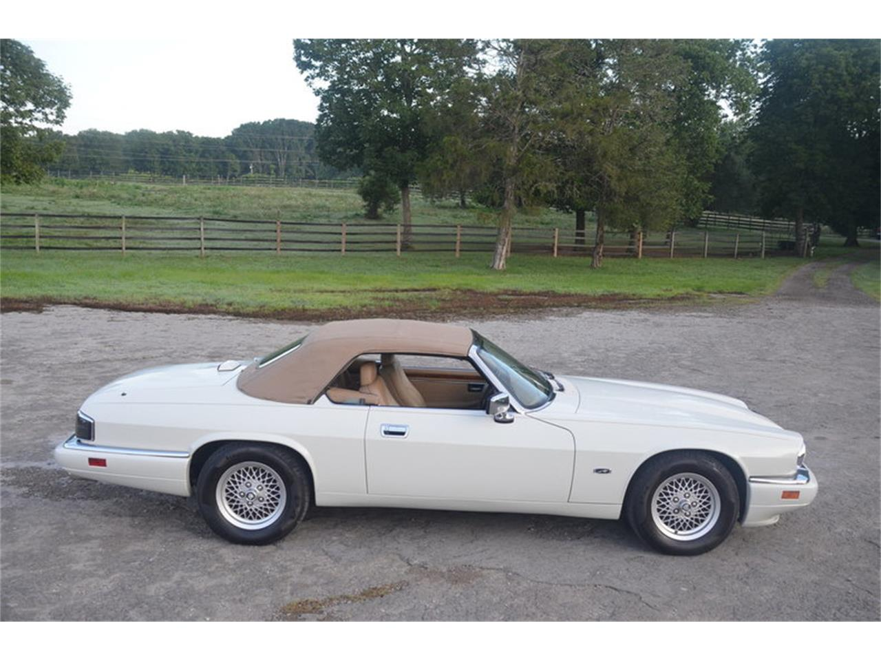 Large Picture of '94 Jaguar XJS located in Tennessee - $19,500.00 Offered by Frazier Motor Car Company - NRL8