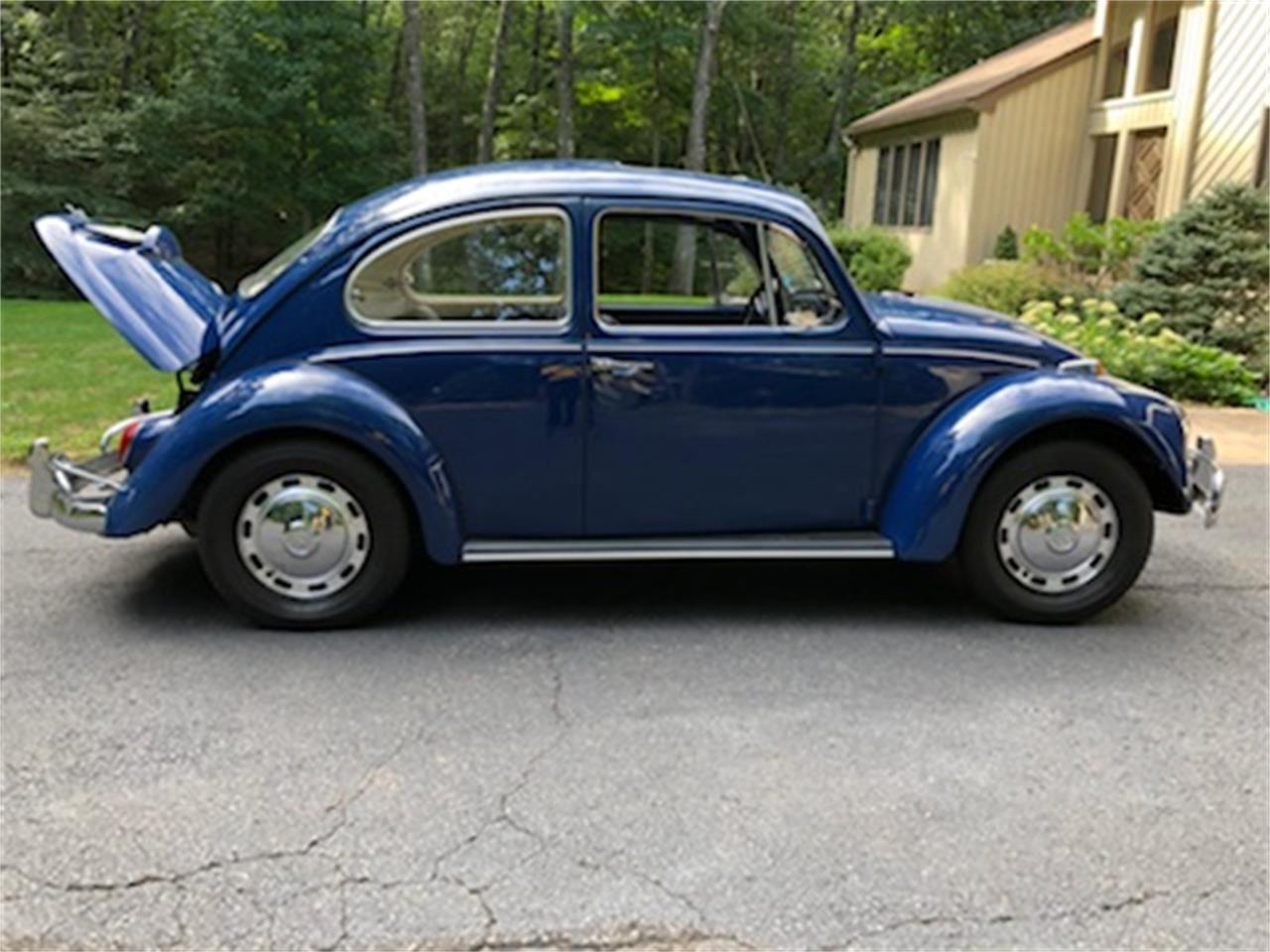 Large Picture of '67 Beetle - NS2J