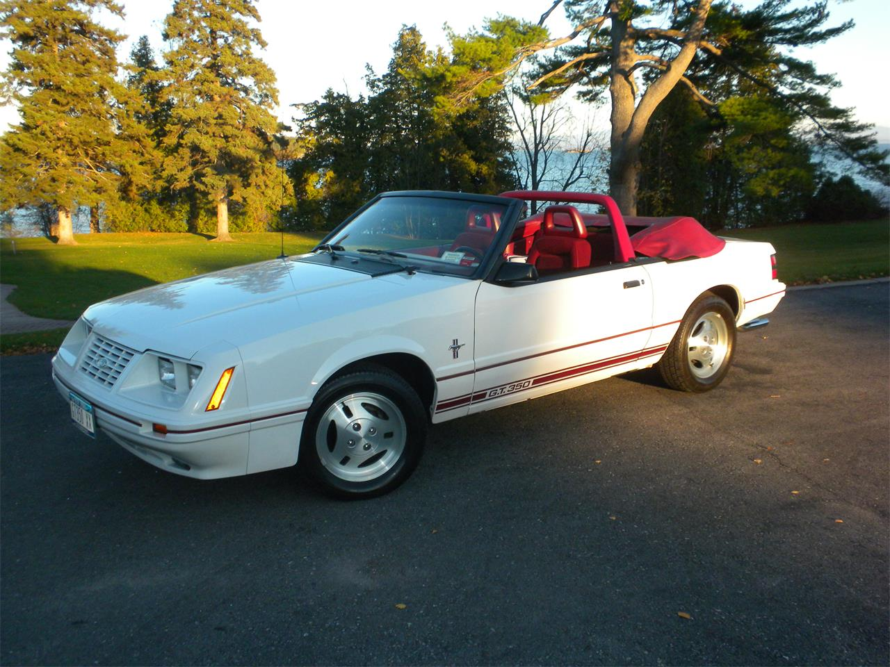 For sale 1984 ford mustang gt350 in plattsburgh new york