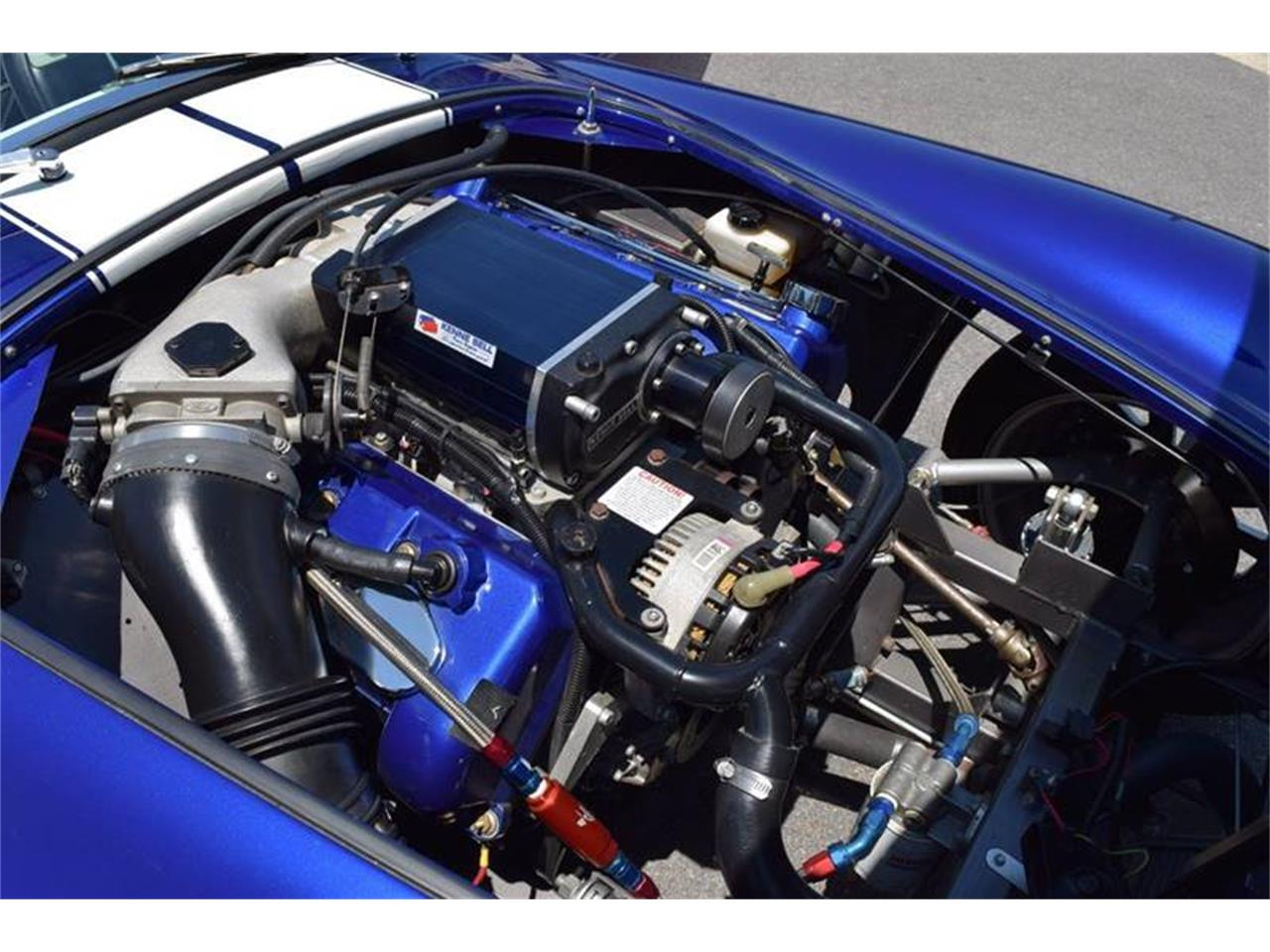 Large Picture of '65 Cobra - NTIX