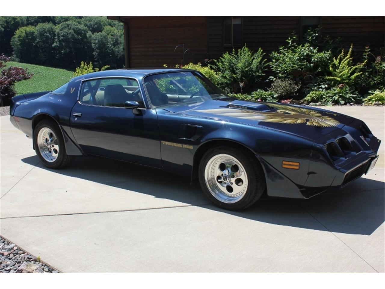 Large Picture of '81 Firebird Trans Am - NTQK