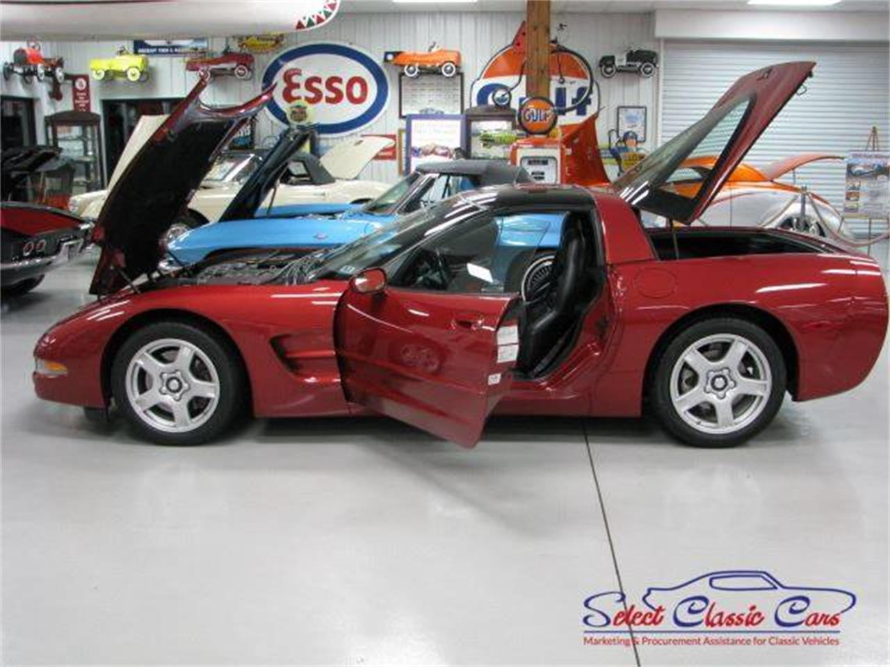 Large Picture of '97 Corvette - NTVK