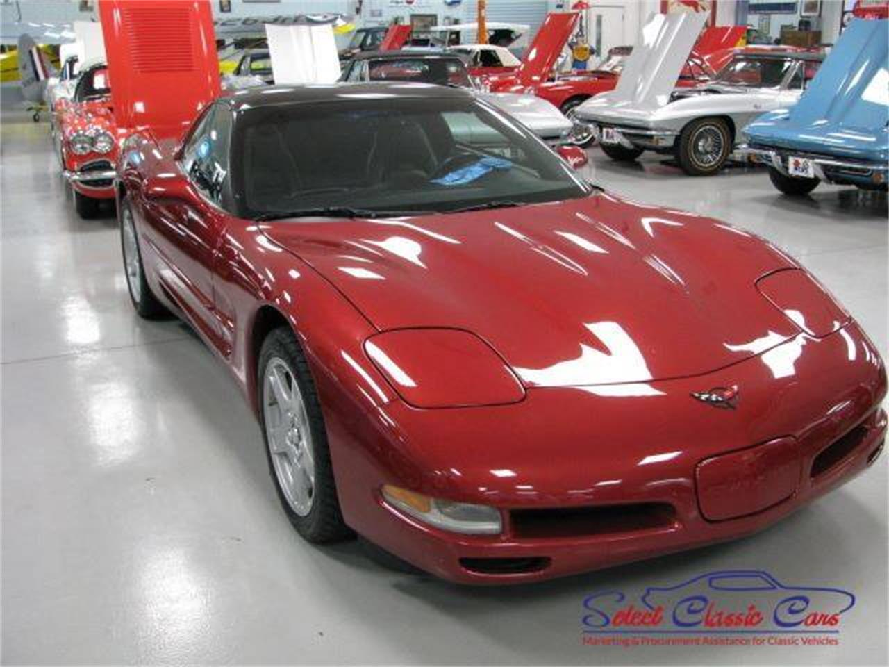Large Picture of '97 Corvette - NTVK
