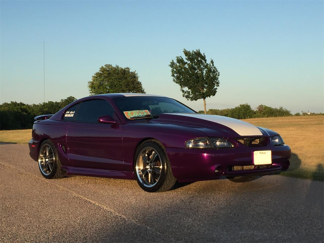 Large picture of 98 mustang gt ntzb