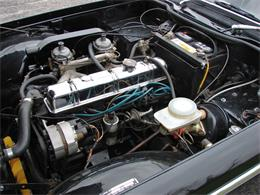 Picture of '68 TR250 - NTZN