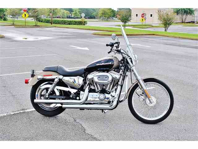 Picture of '04 Sportster - NUEF