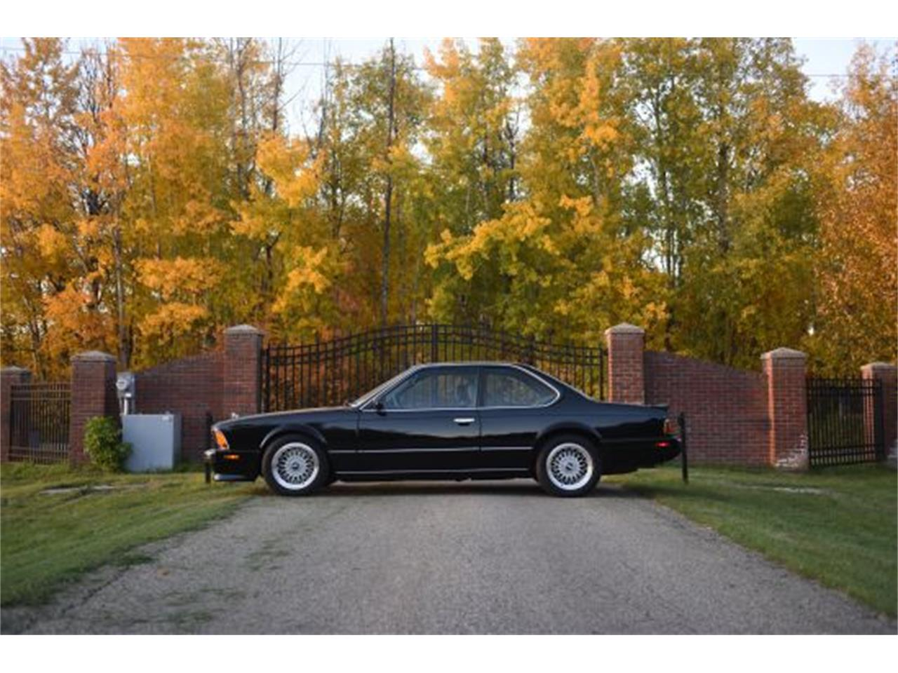 Large Picture of '88 M6 - NUI1