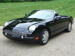 Picture of '02 Thunderbird - NUPH