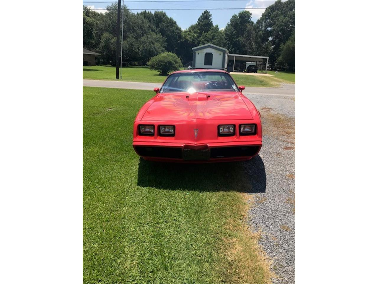Large Picture of '79 Firebird Trans Am - NVJD
