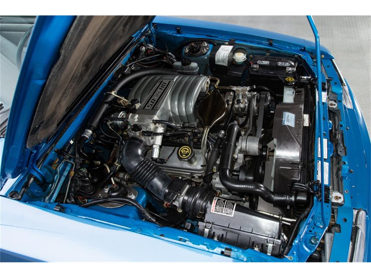 Large Picture of '89 Mustang - NVUN