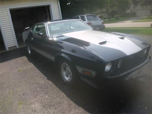 Picture of Classic 1973 Mustang - $21,995.00 - NWHG