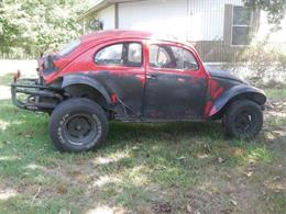 Picture of '64 Beetle - NWJO
