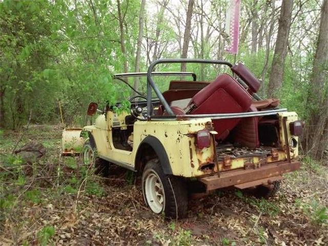 Picture of '79 CJ7 - NWMH