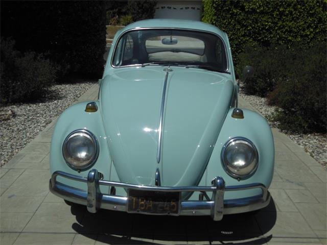 Picture of '66 Beetle located in WEST HILLS California Offered by a Private Seller - NWUP