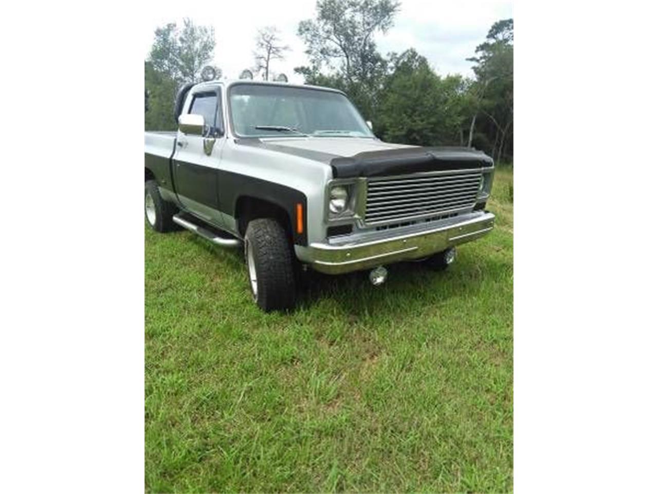 chevy scottsdale 1978 truck