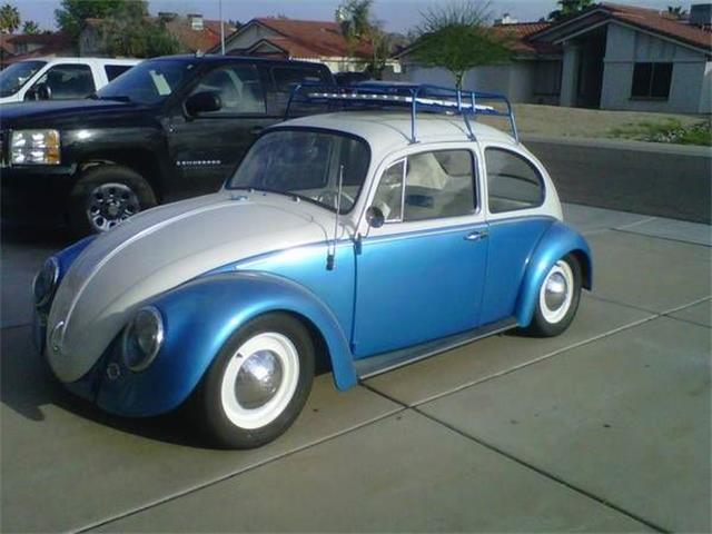 Picture of '65 Beetle - NXVD