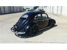Picture of 1956 Beetle located in Florida Auction Vehicle Offered by Premier Auction Group - NSJF