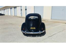 Picture of Classic 1956 Volkswagen Beetle located in Florida Auction Vehicle - NSJF