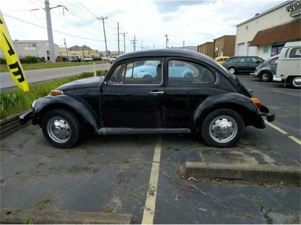 Large Picture of '75 Beetle - NYJ8