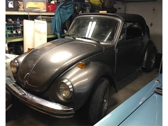 Picture of '79 Super Beetle - NYRC