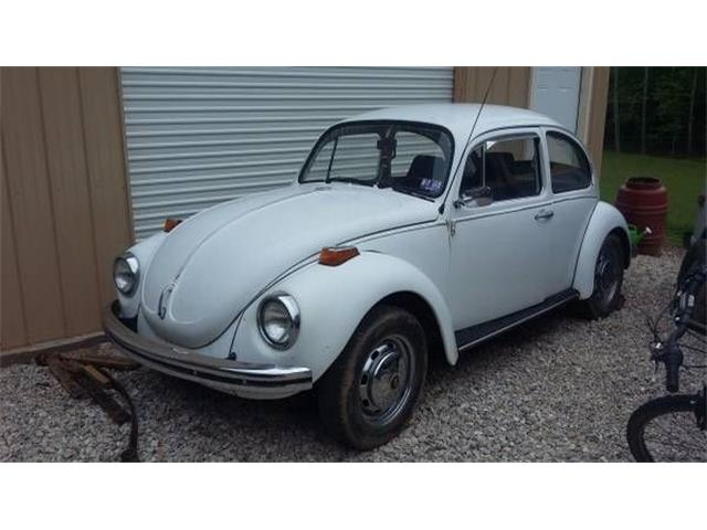 Picture of '71 Beetle - NZAM