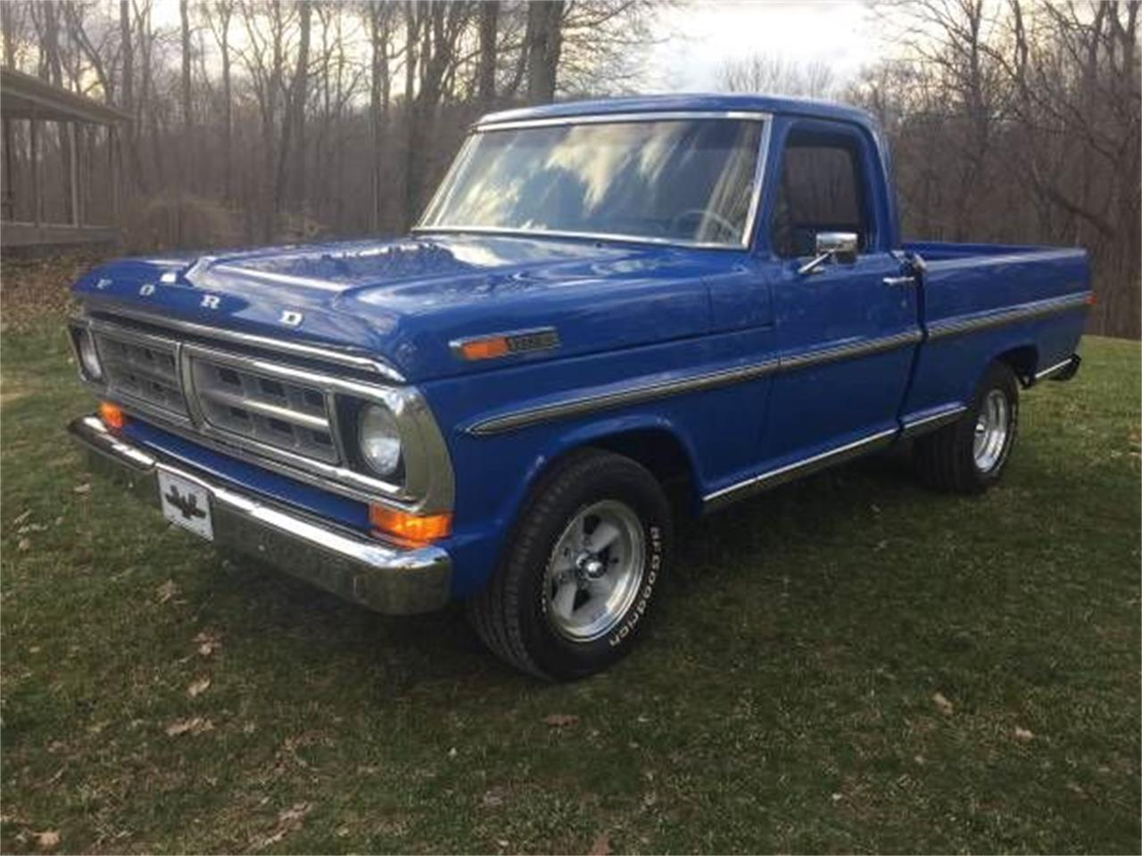 Large picture of 72 f100 nzbg