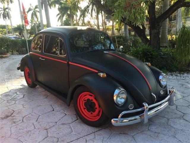Picture of '67 Beetle - NZDK