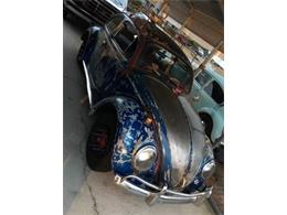 Picture of '64 Beetle - NZMK