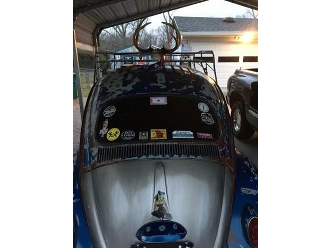 Large Picture of '64 Beetle - NZMK