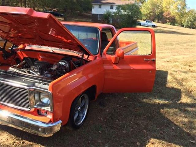 Picture of '75 C10 - NZP2