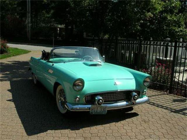 Picture of '55 Thunderbird - NZPS