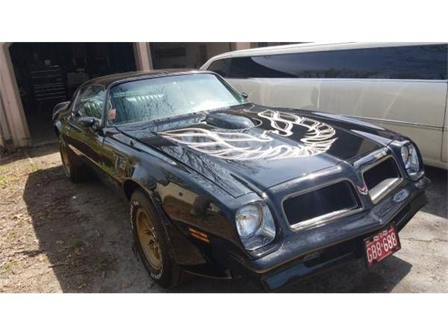 Picture of '76 Firebird Trans Am - NZQA
