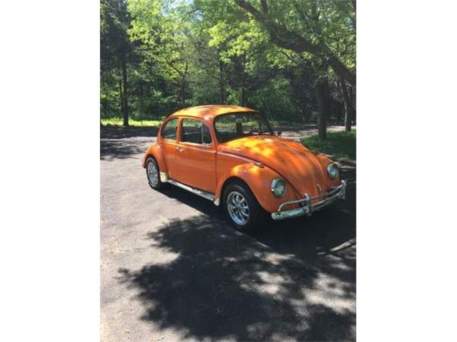 Picture of '67 Beetle - NZXI