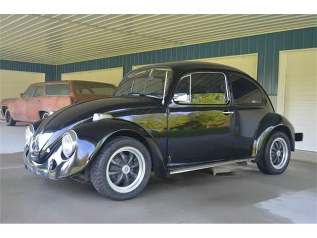 Picture of '76 Beetle - O02L