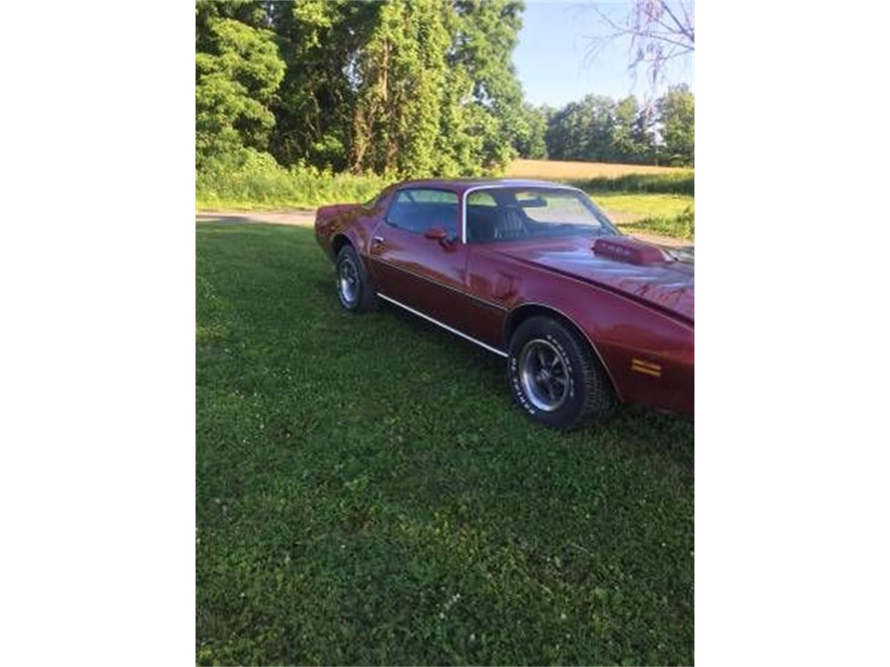 Large Picture of '79 Firebird Trans Am - $10,395.00 - O159