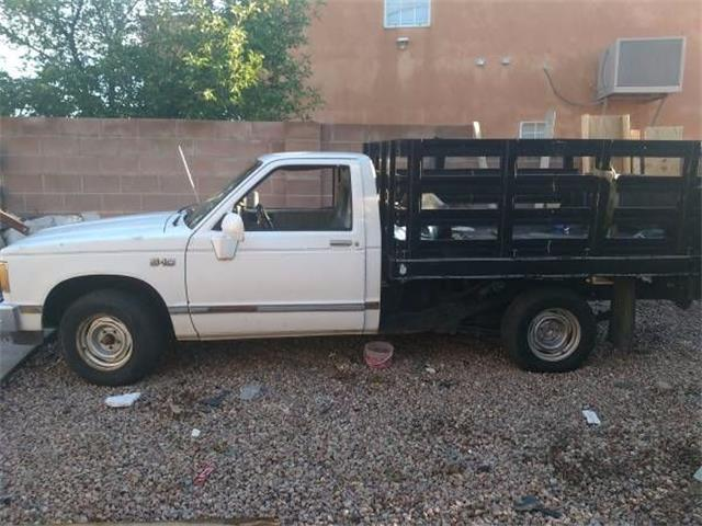 Picture of '82 S10 - O20B