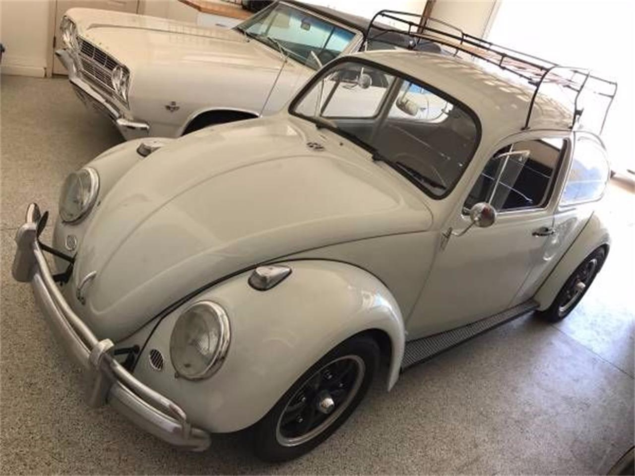 For Sale: 1965 Volkswagen Beetle in Cadillac, Michigan