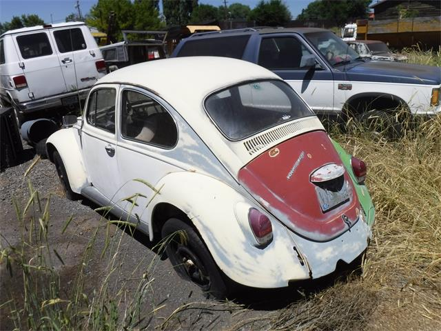 Picture of '68 Beetle - O2F2